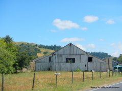 nicasio valley barn