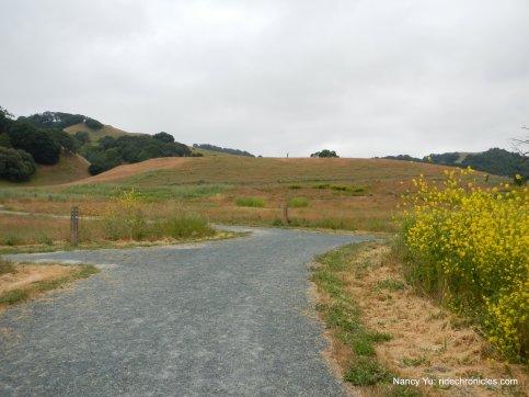 to windmill trail