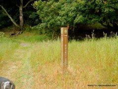 stay on windmill trail
