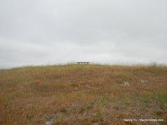 bay area ridge trail picnic area