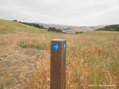 return on bay area ridge trail