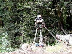 pinehurst rd memorial