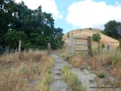 to gary bogue trail