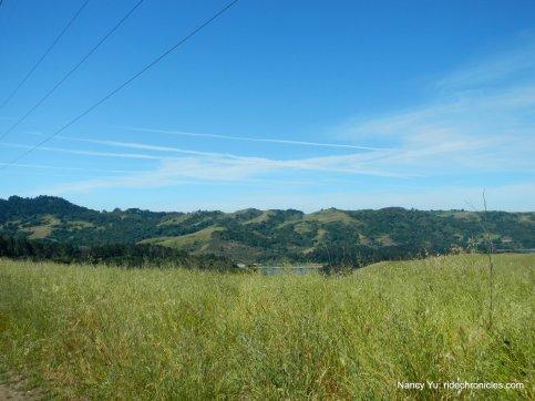east bay hills