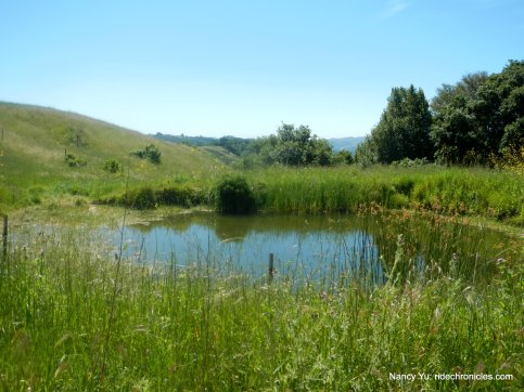 oursan trail pond