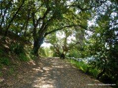 oursan trail