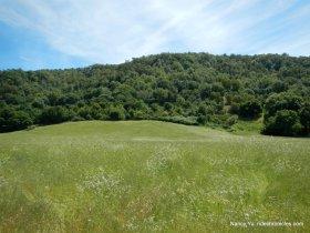 briones valley