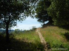black creek trail
