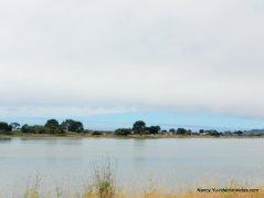 CA-1 N-bolinas bay/lagoon