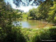 jewel lake
