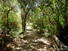 to jewel lake boardwalk