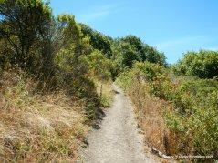 wildcat peak trail