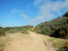 morro dunes ecological reserve