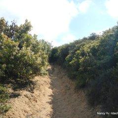 sandy ravine