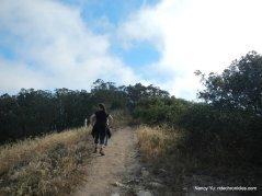 towards ridge