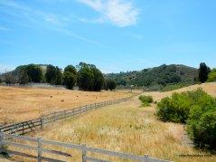 tiffany ranch rd