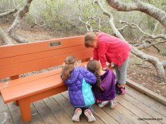 rose bowker grove bench