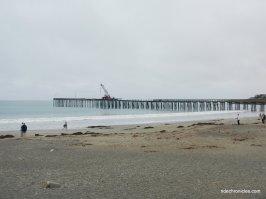 cayucos beach & pier