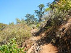 tick wood trailtick wood trail