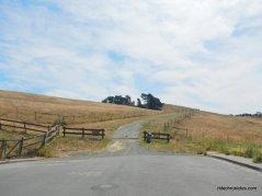 mccosker trail