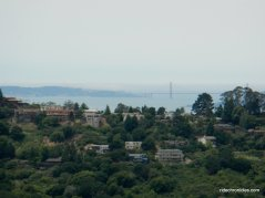 berkeley hills-golden gate bridge