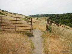 havey canyon trail