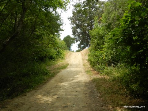 wildcat creek trail