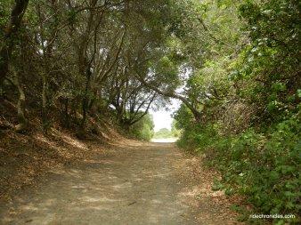 wildcat creek trail
