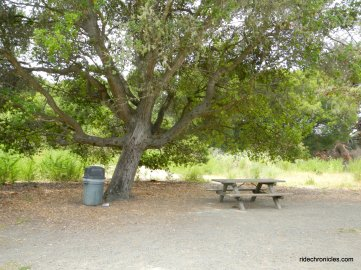 wildcat creek trail picnic area