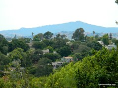 wildcat canyon homes