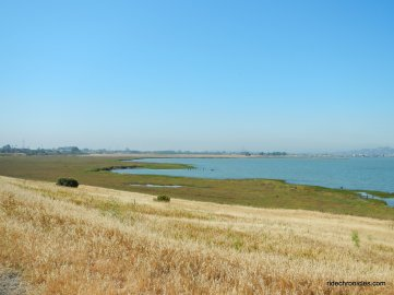 parchester marsh