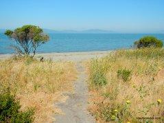 to beach area