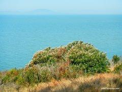 shoreline cliff