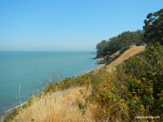 shoreline cliffs