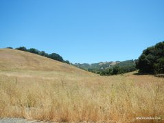 bear creek rd-briones