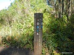 stay on curran trail
