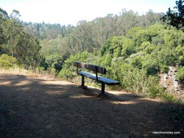 tilden park views