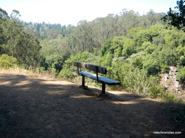 tilden park views