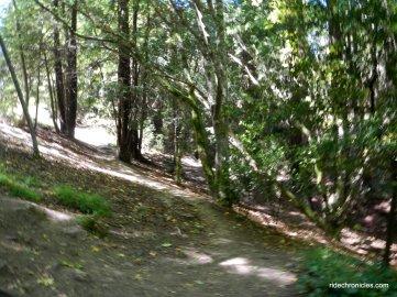 wildcat gorge trail