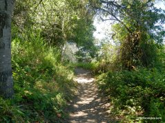 selby trail