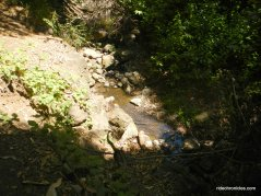 wildcat gorge trail-wildcat creek