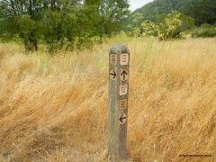 to kings canyon loop trail