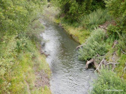 moraga creek