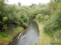 moraga creek