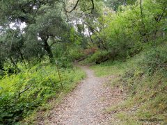 rimer creek trail