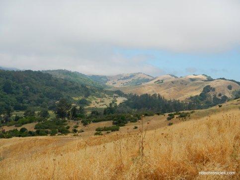 rimer creek trail views