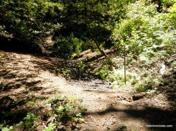 kings canyon loop trail