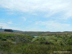 coastal scrub-grasslands