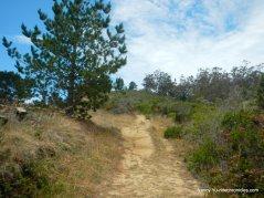 s ridge trail
