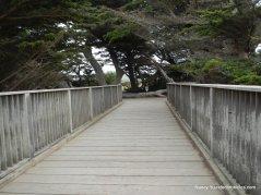 coastal trail-seymour bridge